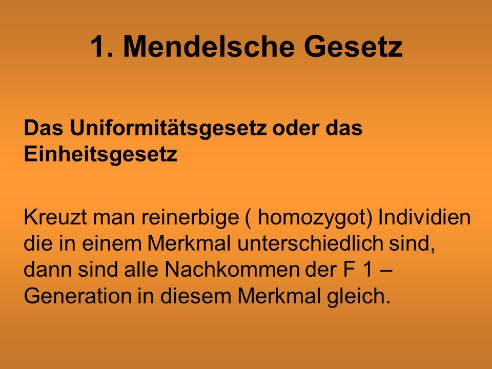 1. Mendelsche Gesetz Das Uniformitätsgesetz oder das Einheitsgesetz Kreuzt man reinerbige ( homozygot) Individien die in einem Merkmal unterschiedlich