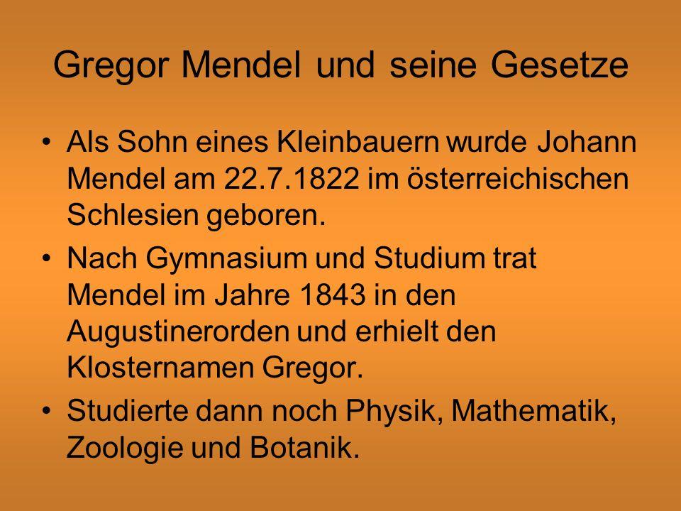 Gregor Mendel und seine Gesetze Als Sohn eines Kleinbauern wurde Johann Mendel am 22.7.1822 im österreichischen Schlesien geboren.