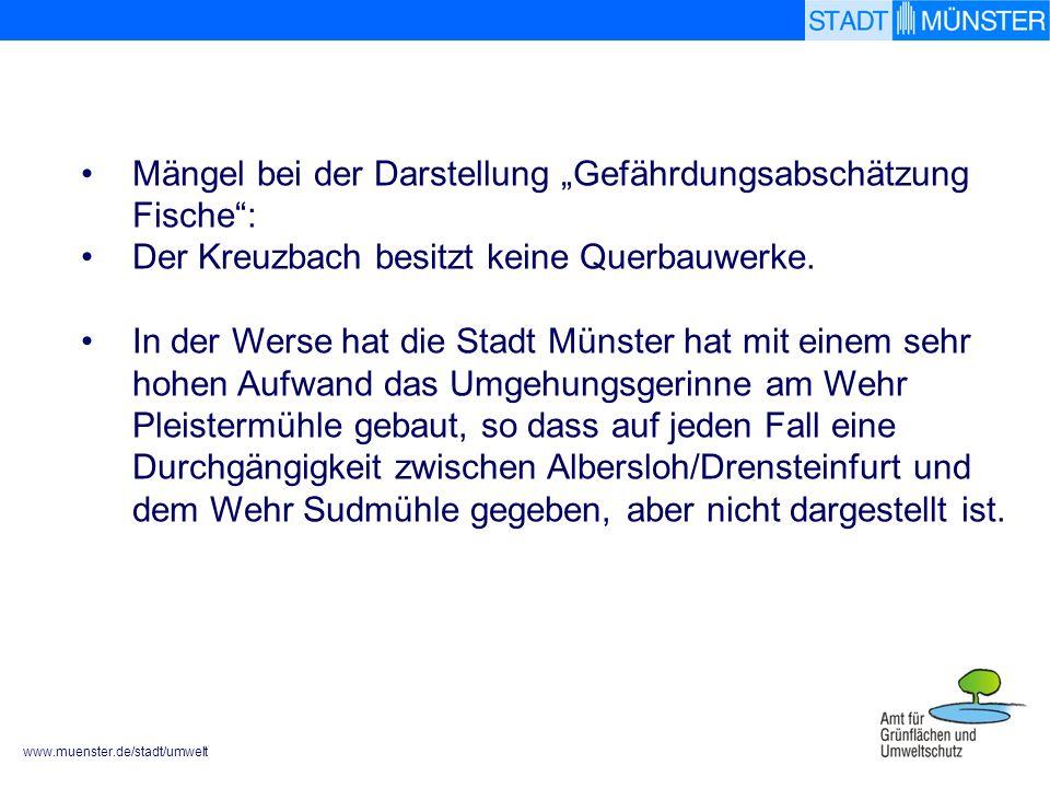 www.muenster.de/stadt/umwelt Mängel bei der Darstellung Gefährdungsabschätzung Fische: Der Kreuzbach besitzt keine Querbauwerke. In der Werse hat die