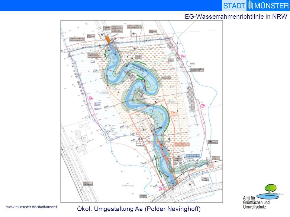 www.muenster.de/stadt/umwelt EG-Wasserrahmenrichtlinie in NRW Ökol. Umgestaltung Aa (Polder Nevinghoff)
