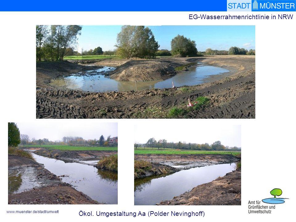 www.muenster.de/stadt/umwelt EG-Wasserrahmenrichtlinie in NRW Ökol.
