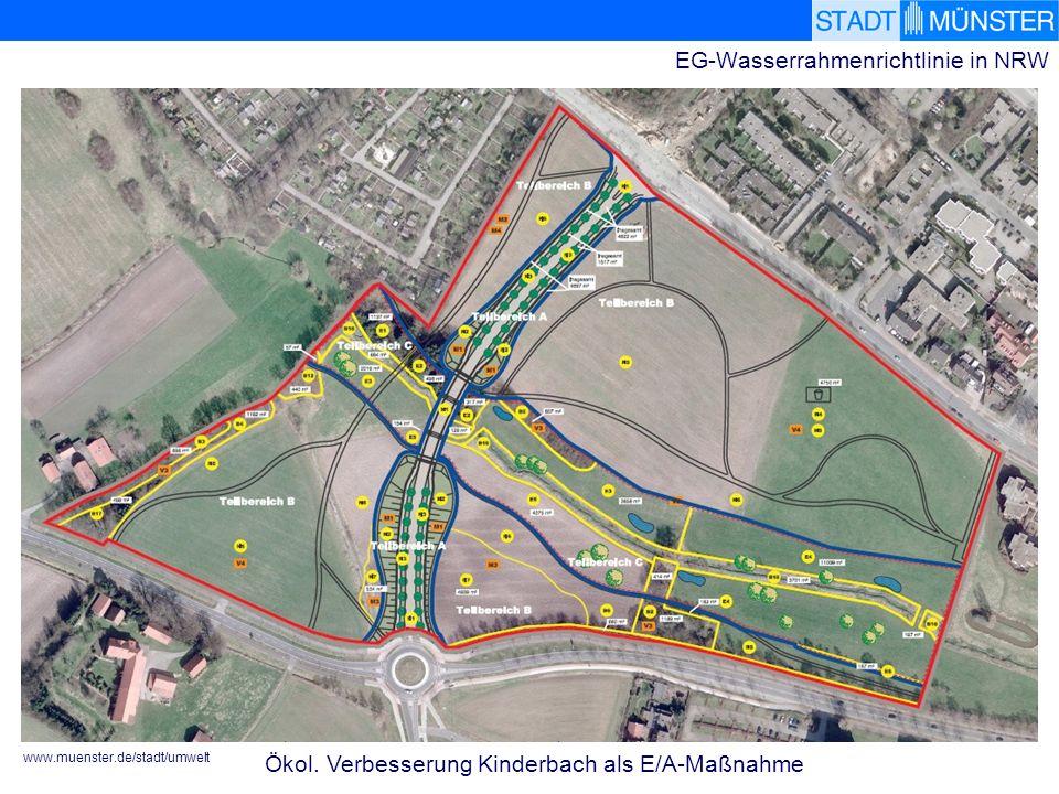 www.muenster.de/stadt/umwelt EG-Wasserrahmenrichtlinie in NRW Ökol. Verbesserung Kinderbach als E/A-Maßnahme