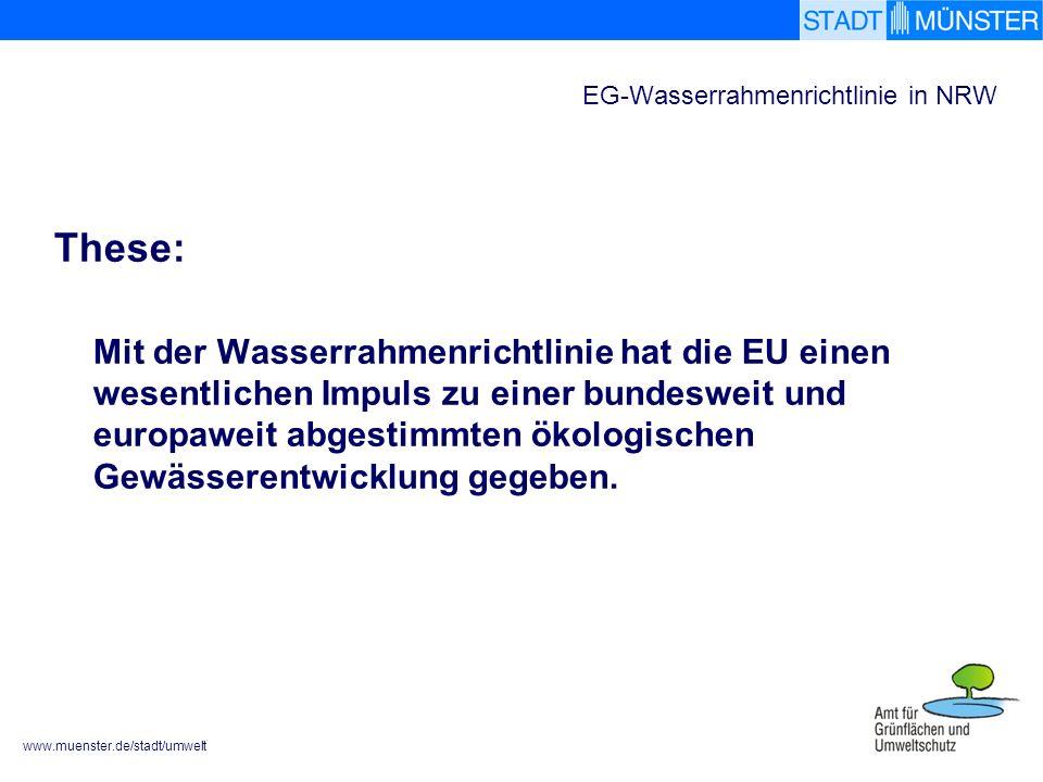 www.muenster.de/stadt/umwelt EG-Wasserrahmenrichtlinie in NRW These: Mit der Wasserrahmenrichtlinie hat die EU einen wesentlichen Impuls zu einer bundesweit und europaweit abgestimmten ökologischen Gewässerentwicklung gegeben.
