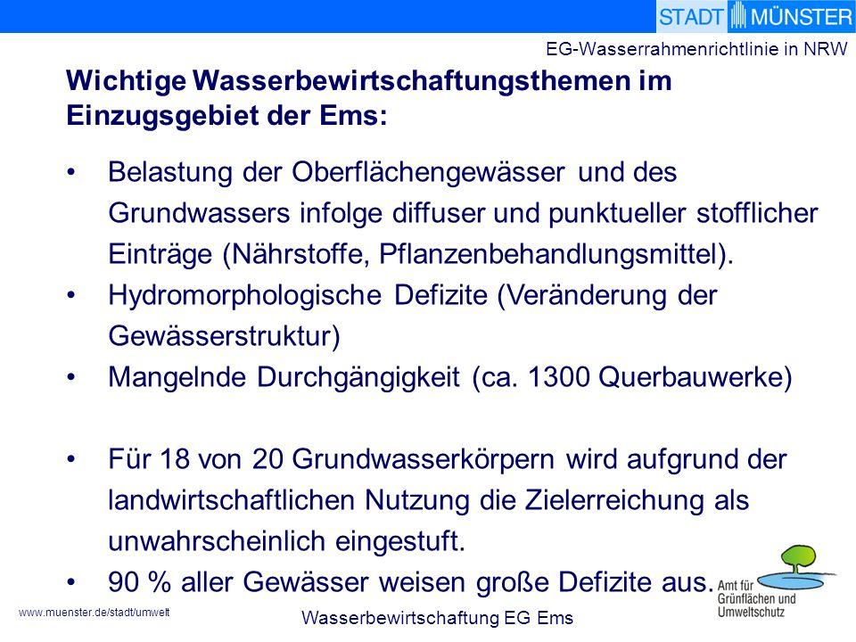www.muenster.de/stadt/umwelt EG-Wasserrahmenrichtlinie in NRW Wichtige Wasserbewirtschaftungsthemen im Einzugsgebiet der Ems: Wasserbewirtschaftung EG Ems Belastung der Oberflächengewässer und des Grundwassers infolge diffuser und punktueller stofflicher Einträge (Nährstoffe, Pflanzenbehandlungsmittel).