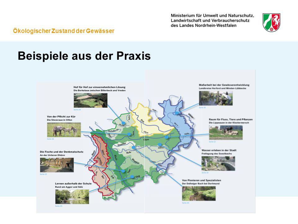 Beispiele aus der Praxis Ökologischer Zustand der Gewässer