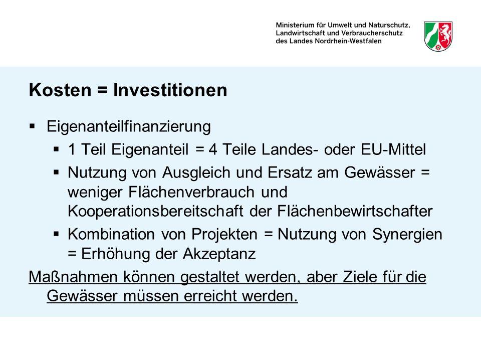 Kosten = Investitionen Eigenanteilfinanzierung 1 Teil Eigenanteil = 4 Teile Landes- oder EU-Mittel Nutzung von Ausgleich und Ersatz am Gewässer = weni