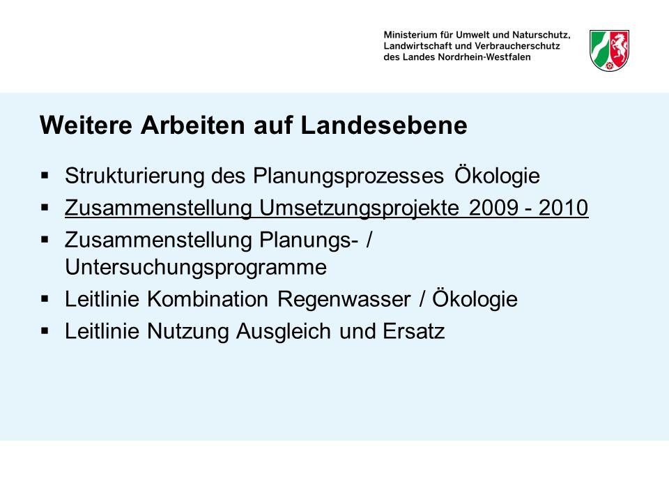 Weitere Arbeiten auf Landesebene Strukturierung des Planungsprozesses Ökologie Zusammenstellung Umsetzungsprojekte 2009 - 2010 Zusammenstellung Planun