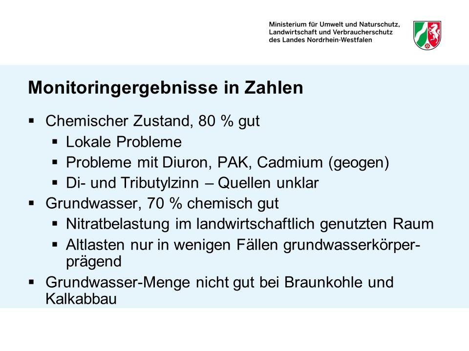 Monitoringergebnisse in Zahlen Chemischer Zustand, 80 % gut Lokale Probleme Probleme mit Diuron, PAK, Cadmium (geogen) Di- und Tributylzinn – Quellen