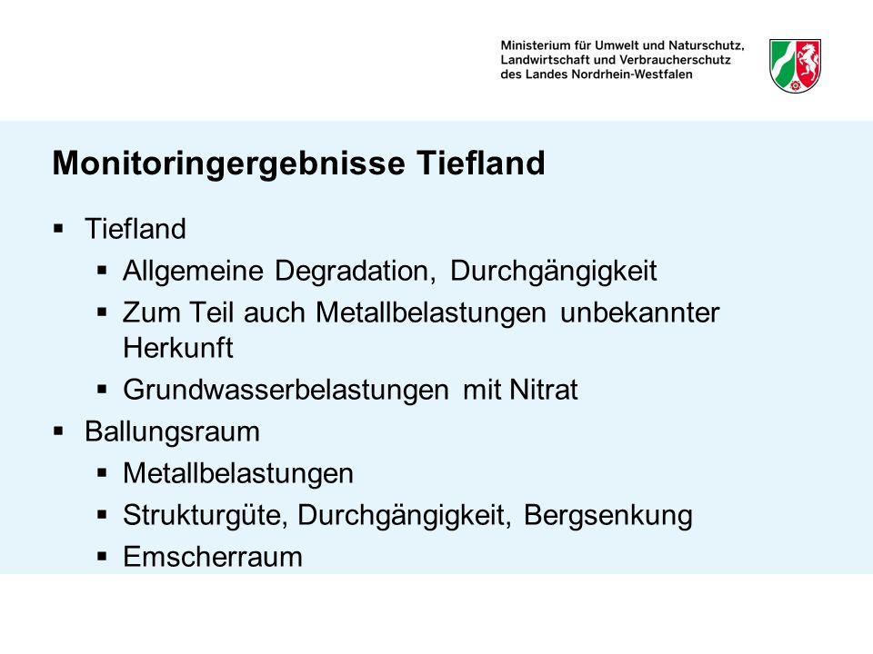 Monitoringergebnisse Tiefland Tiefland Allgemeine Degradation, Durchgängigkeit Zum Teil auch Metallbelastungen unbekannter Herkunft Grundwasserbelastu