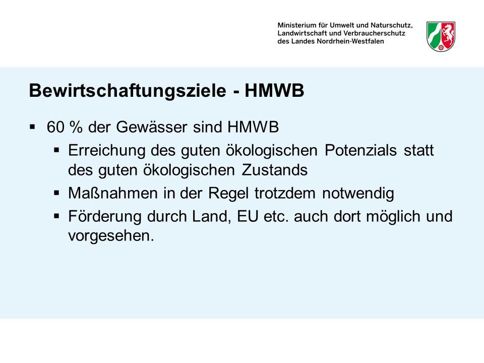 Bewirtschaftungsziele - HMWB 60 % der Gewässer sind HMWB Erreichung des guten ökologischen Potenzials statt des guten ökologischen Zustands Maßnahmen