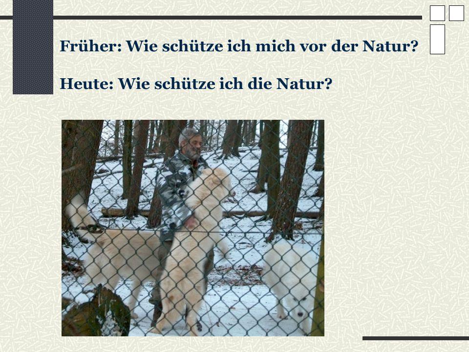 Früher: Wie schütze ich mich vor der Natur? Heute: Wie schütze ich die Natur?
