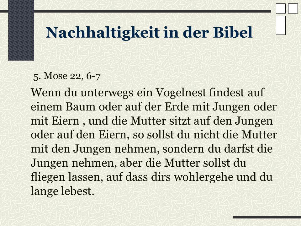 Nachhaltigkeit in der Bibel 5. Mose 22, 6-7 Wenn du unterwegs ein Vogelnest findest auf einem Baum oder auf der Erde mit Jungen oder mit Eiern, und di