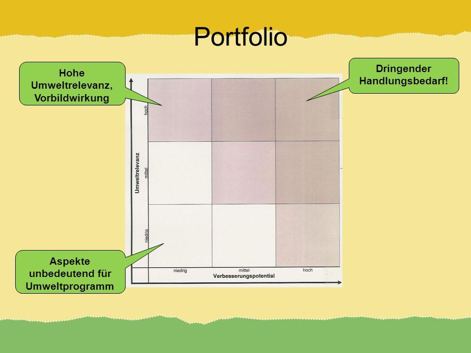 Portfolio Hohe Umweltrelevanz, Vorbildwirkung Aspekte unbedeutend für Umweltprogramm Dringender Handlungsbedarf!