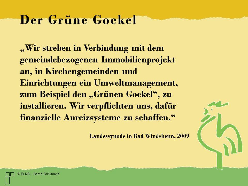 Der Grüne Gockel Wir streben in Verbindung mit dem gemeindebezogenen Immobilienprojekt an, in Kirchengemeinden und Einrichtungen ein Umweltmanagement,