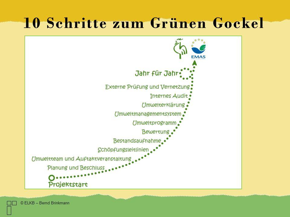 10 Schritte zum Grünen Gockel © ELKB – Bernd Brinkmann