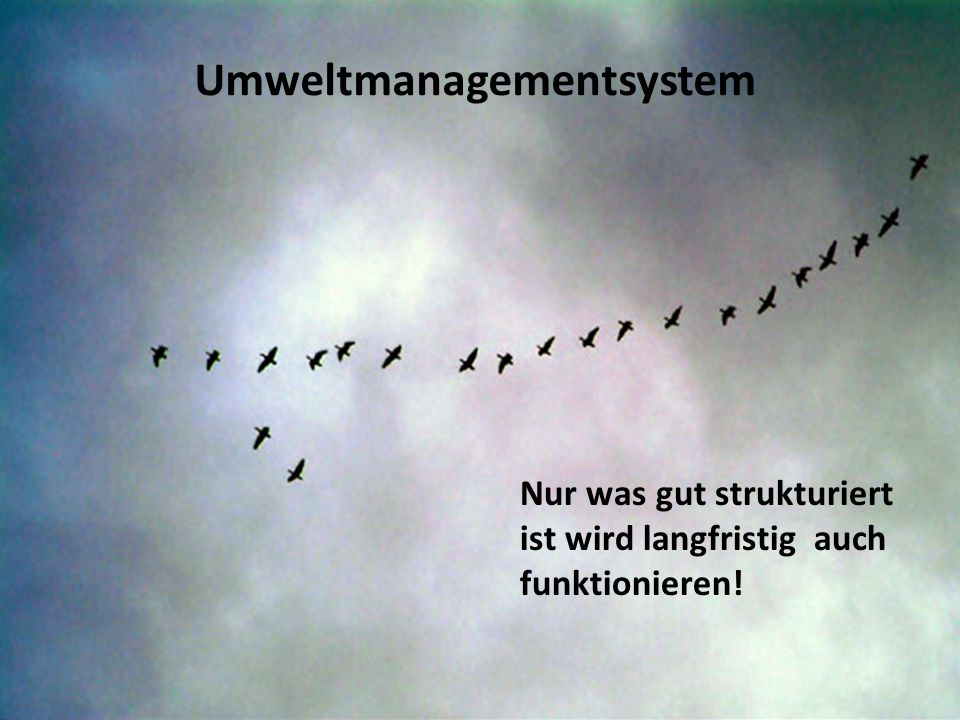Umweltmanagementsystem Nur was gut strukturiert ist wird langfristig auch funktionieren!