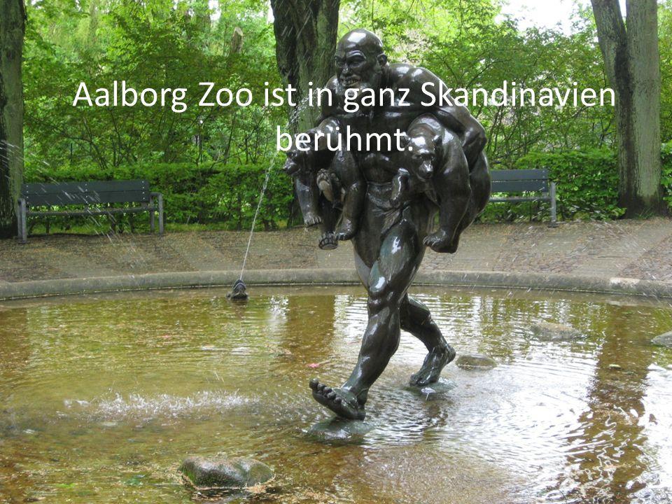 Aalborg Zoo ist in ganz Skandinavien berühmt.