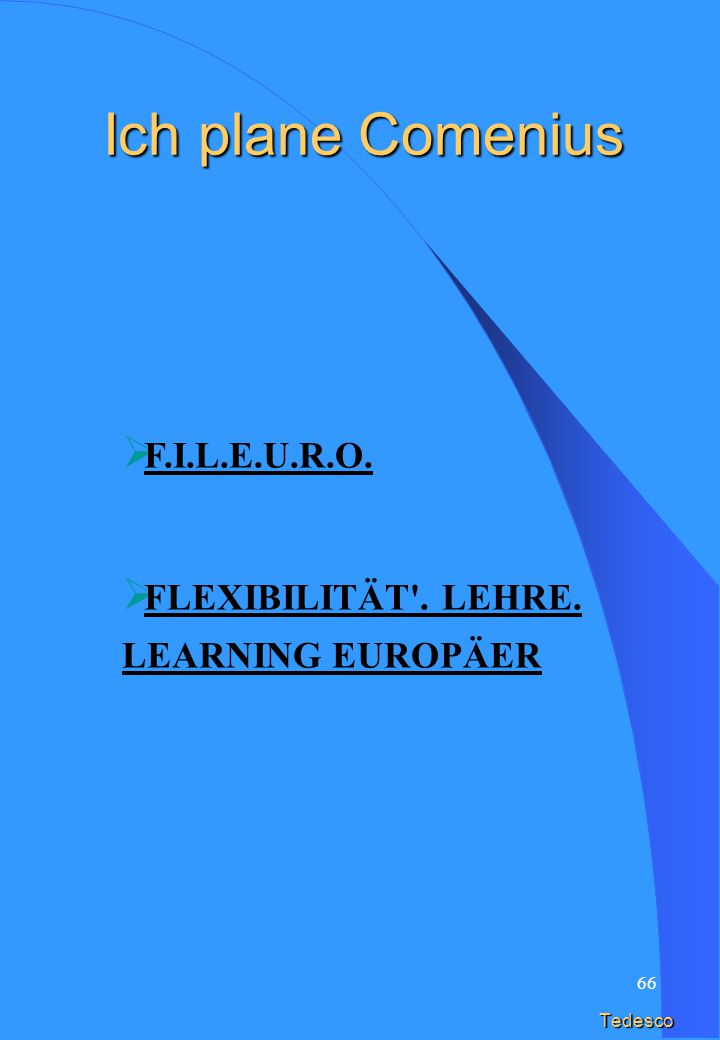 65 Inglese F.I.L.E.U.R.O. FLEXIBILITY . TEACHING. LEARNING EUROPEI I plan Comenius