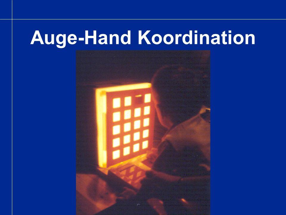 Auge-Hand Koordination