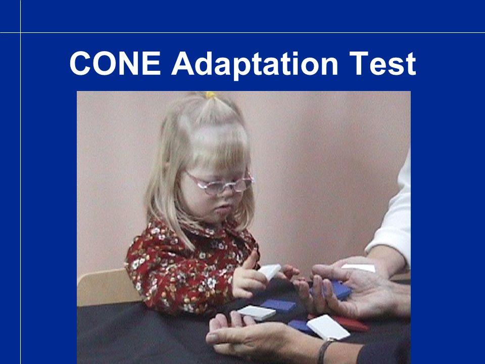 CONE Adaptation Test