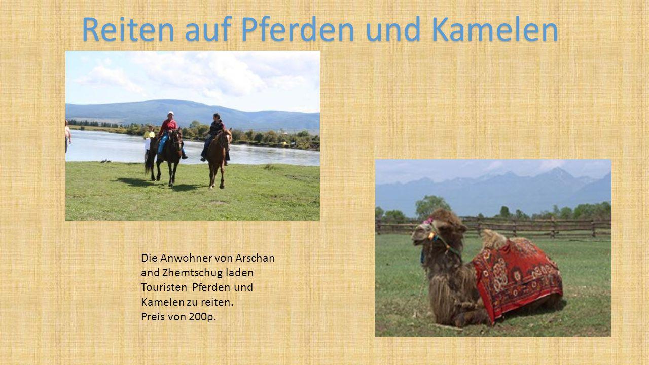 Die Anwohner von Arschan and Zhemtschug laden Touristen Pferden und Kamelen zu reiten. Preis von 200p. Reiten auf Pferden und Kamelen
