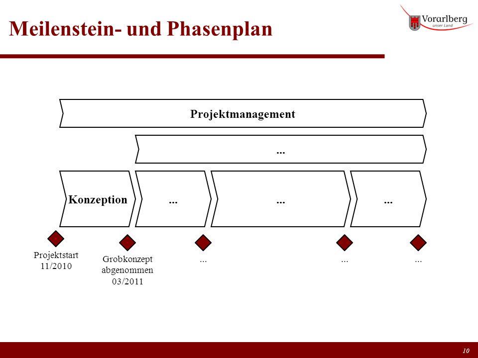 Meilenstein- und Phasenplan 10 Konzeption Grobkonzept abgenommen 03/2011... Projektmanagement Projektstart 11/2010