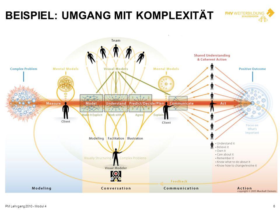 BEISPIEL: UMGANG MIT KOMPLEXITÄT PM Lehrgang 2010 - Modul 46