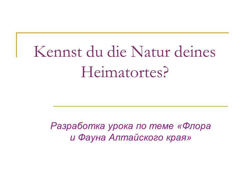 Kennst du die Natur deines Heimatortes? Разработка урока по теме «Флора и Фауна Алтайского края»