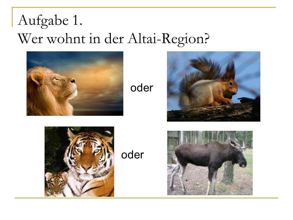 Aufgabe 1. Wer wohnt in der Altai-Region? oder