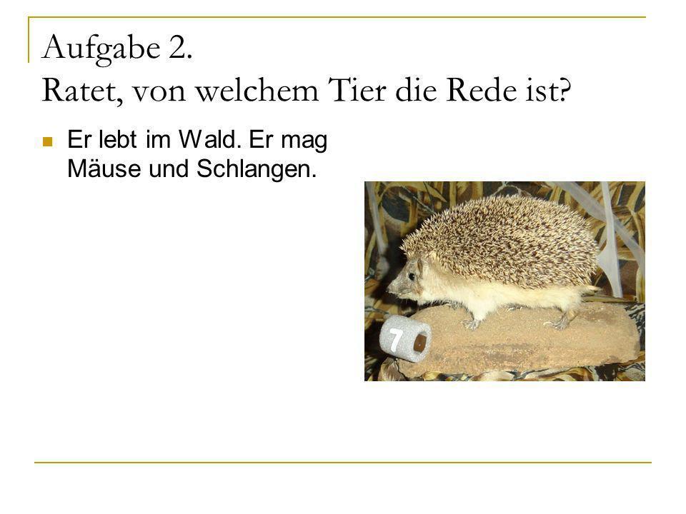 Aufgabe 2. Ratet, von welchem Tier die Rede ist? Er lebt im Wald. Er mag Mäuse und Schlangen.