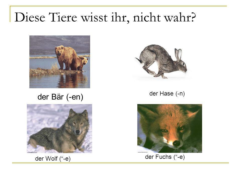 Diese Tiere wisst ihr, nicht wahr? der Bär (-en) der Hase (-n) der Wolf (-e) der Fuchs (-e)