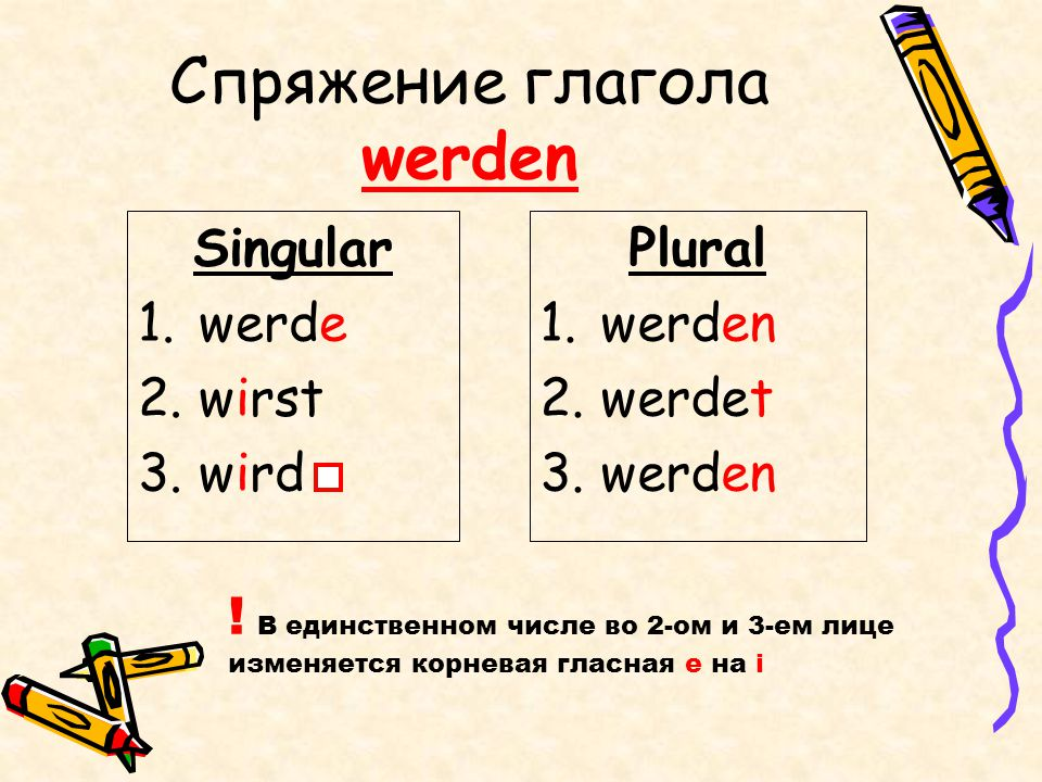 Спряжение глагола werden Singular 1.werde 2.wirst 3.wird Plural 1.werden 2.werdet 3.werden ! В единственном числе во 2-ом и 3-ем лице изменяется корне