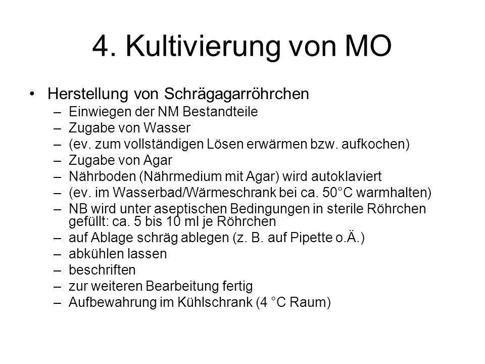4. Kultivierung von MO Herstellung von Schrägagarröhrchen –Einwiegen der NM Bestandteile –Zugabe von Wasser –(ev. zum vollständigen Lösen erwärmen bzw