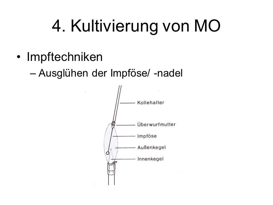 4. Kultivierung von MO Impftechniken –Ausglühen der Impföse/ -nadel