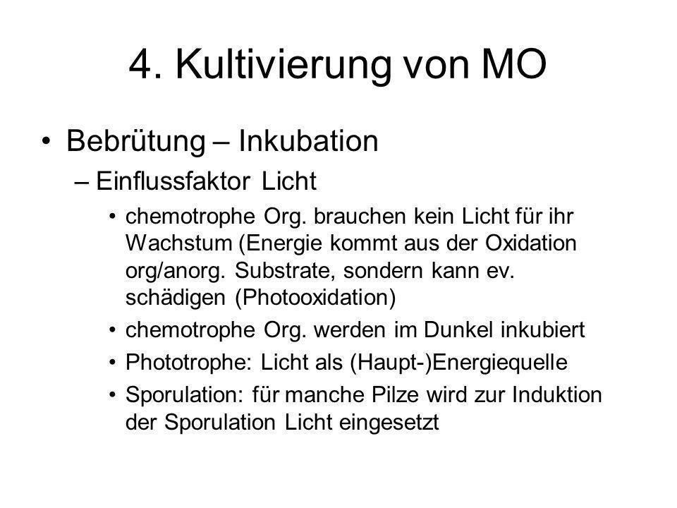 4. Kultivierung von MO Bebrütung – Inkubation –Einflussfaktor Licht chemotrophe Org. brauchen kein Licht für ihr Wachstum (Energie kommt aus der Oxida