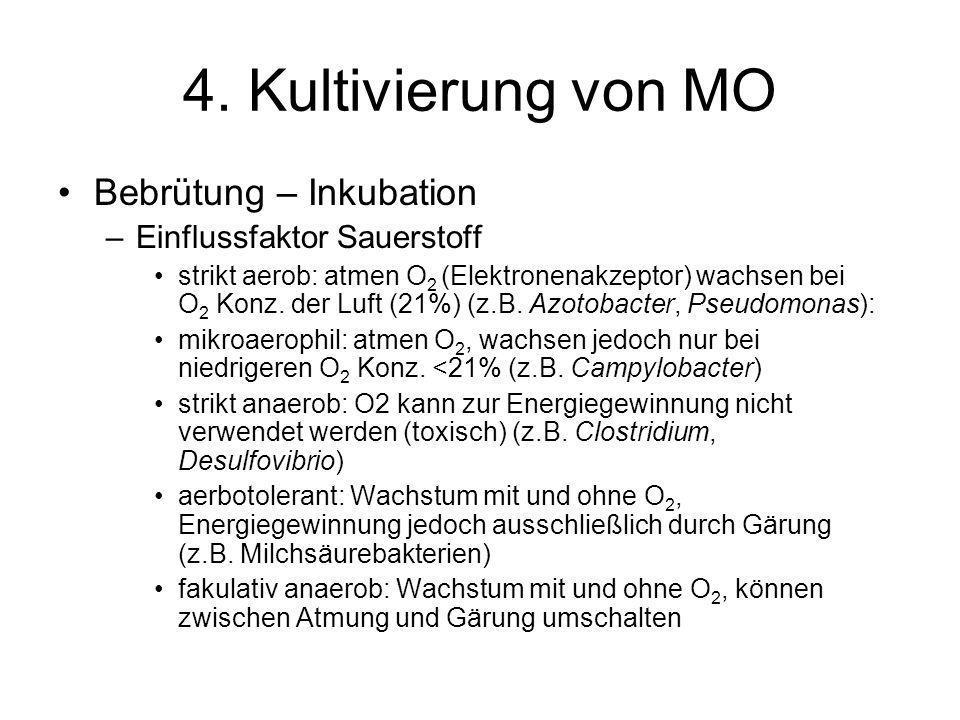 4. Kultivierung von MO Bebrütung – Inkubation –Einflussfaktor Sauerstoff strikt aerob: atmen O 2 (Elektronenakzeptor) wachsen bei O 2 Konz. der Luft (