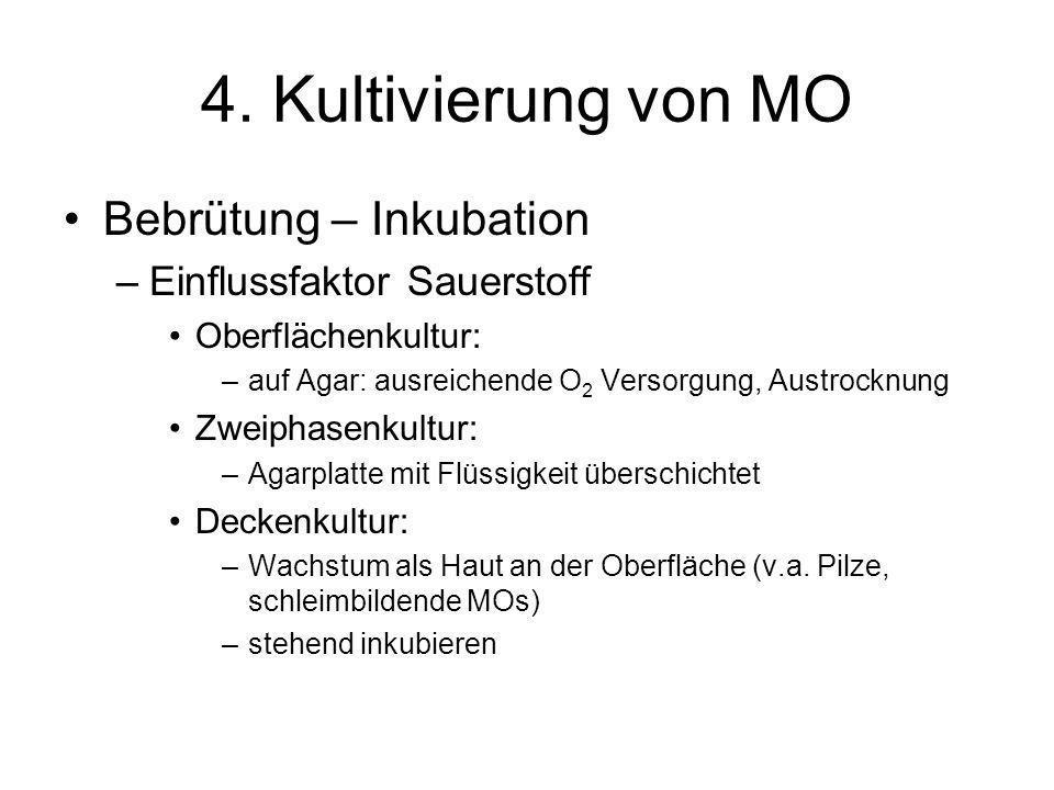 4. Kultivierung von MO Bebrütung – Inkubation –Einflussfaktor Sauerstoff Oberflächenkultur: –auf Agar: ausreichende O 2 Versorgung, Austrocknung Zweip