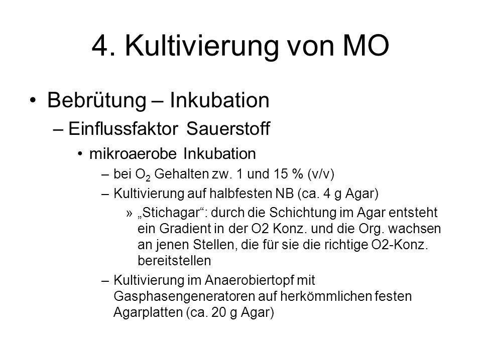 4. Kultivierung von MO Bebrütung – Inkubation –Einflussfaktor Sauerstoff mikroaerobe Inkubation –bei O 2 Gehalten zw. 1 und 15 % (v/v) –Kultivierung a