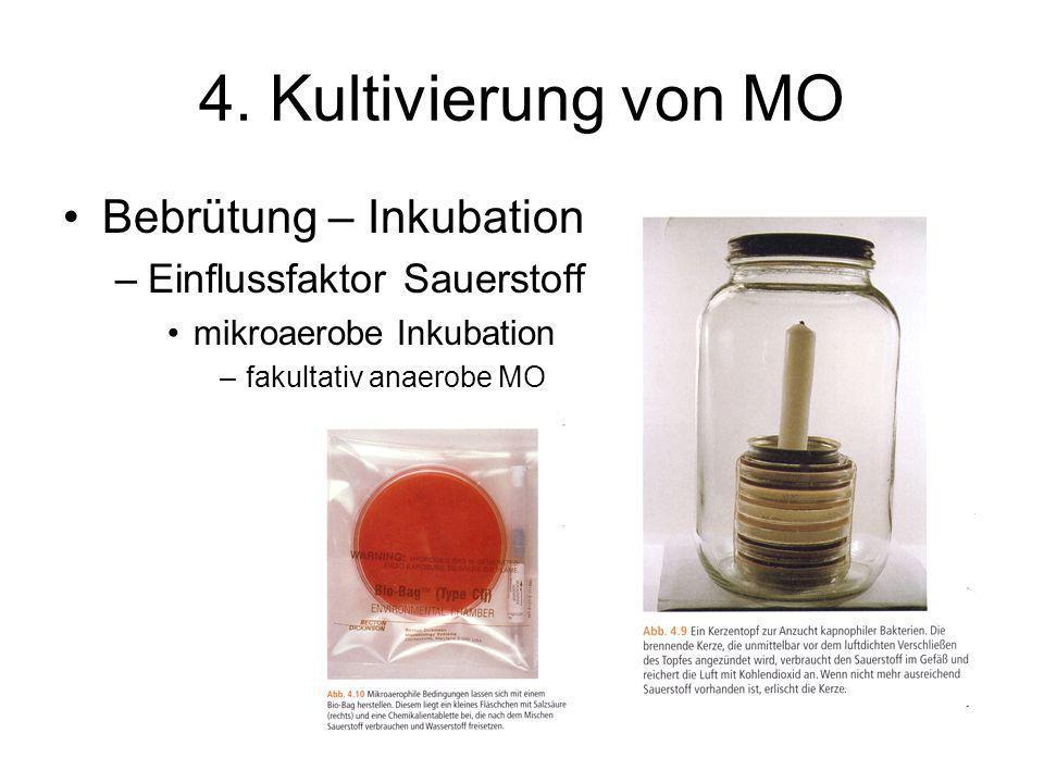 4. Kultivierung von MO Bebrütung – Inkubation –Einflussfaktor Sauerstoff mikroaerobe Inkubation –fakultativ anaerobe MO