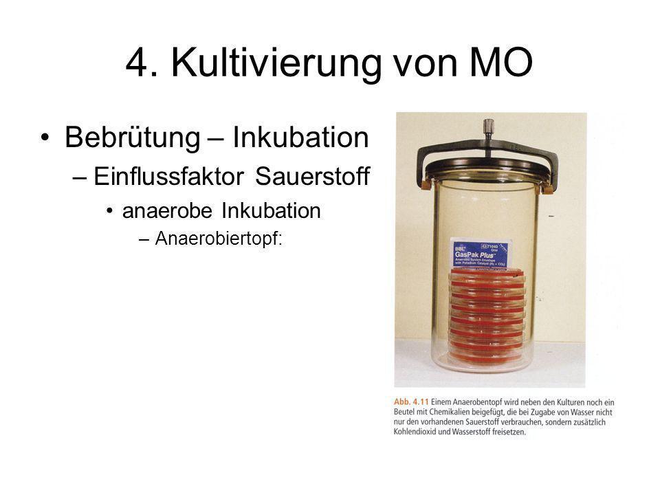 4. Kultivierung von MO Bebrütung – Inkubation –Einflussfaktor Sauerstoff anaerobe Inkubation –Anaerobiertopf: