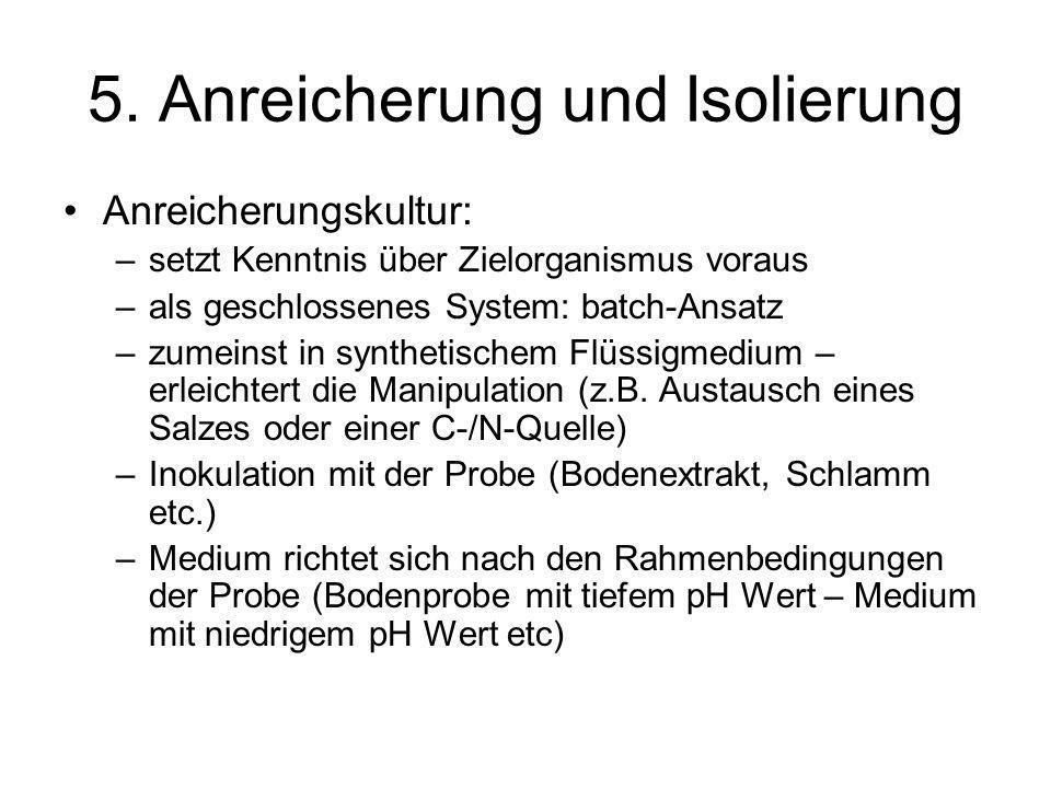 5. Anreicherung und Isolierung Anreicherungskultur: –setzt Kenntnis über Zielorganismus voraus –als geschlossenes System: batch-Ansatz –zumeinst in sy
