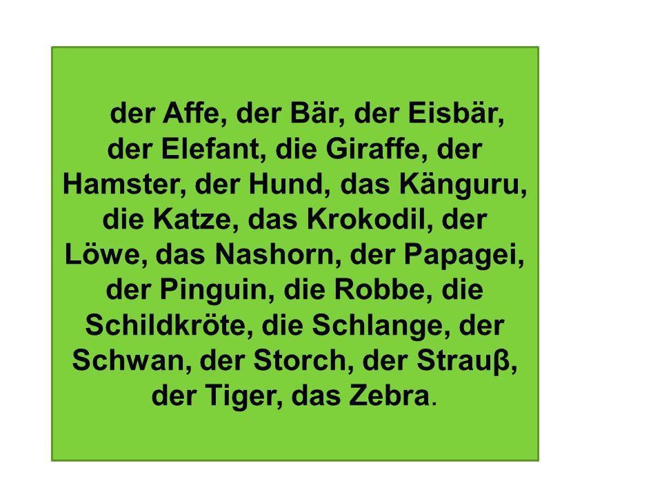 der Affe, der Bär, der Eisbär, der Elefant, die Giraffe, der Hamster, der Hund, das Känguru, die Katze, das Krokodil, der Löwe, das Nashorn, der Papag