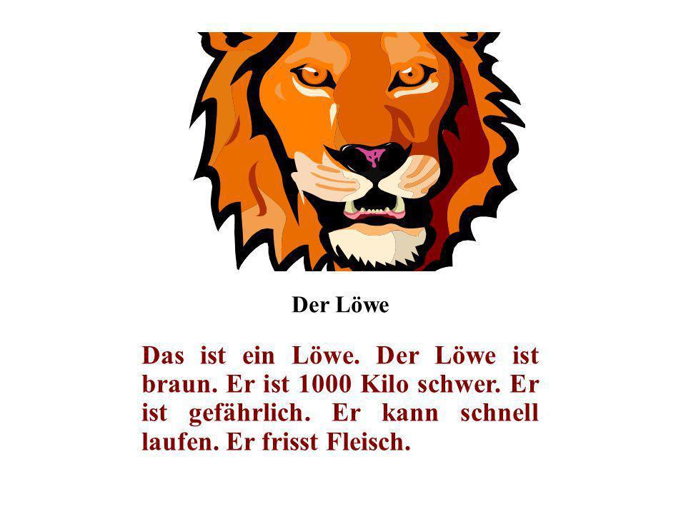 Der Löwe Das ist ein Löwe. Der Löwe ist braun. Er ist 1000 Kilo schwer. Er ist gefährlich. Er kann schnell laufen. Er frisst Fleisch.