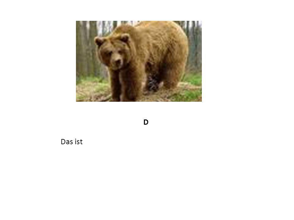 Проверка выполнения задания подведение итогов урока, выставление оценок