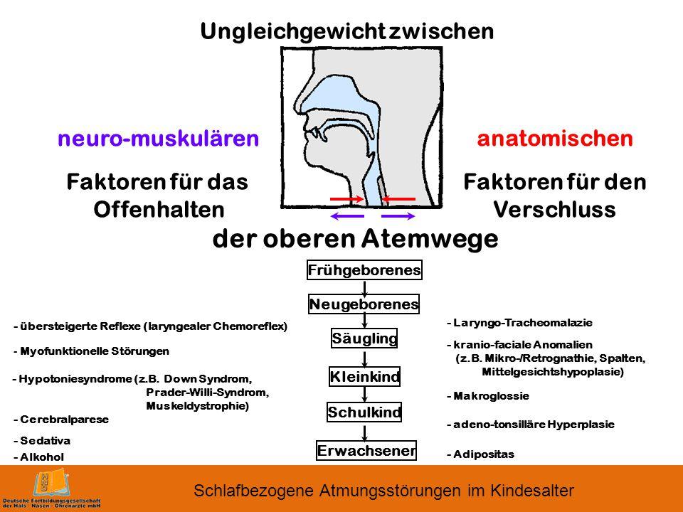 Ungleichgewicht zwischen Faktoren für das Offenhalten Faktoren für den Verschluss der oberen Atemwege neuro-muskulären anatomischen Frühgeborenes Neugeborenes Säugling Kleinkind Schulkind Erwachsener - übersteigerte Reflexe (laryngealer Chemoreflex) - Myofunktionelle Störungen - Hypotoniesyndrome (z.B.