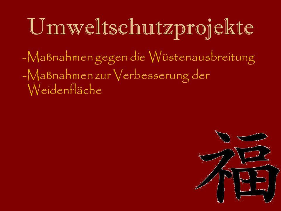 Umweltschutzprojekte -Maßnahmen gegen die Wüstenausbreitung -Maßnahmen zur Verbesserung der Weidenfläche