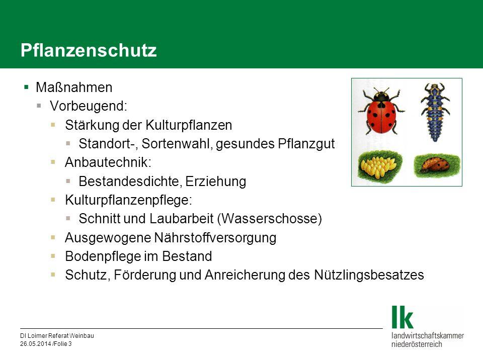DI Loimer Referat Weinbau 26.05.2014 /Folie 3 Pflanzenschutz Maßnahmen Vorbeugend: Stärkung der Kulturpflanzen Standort-, Sortenwahl, gesundes Pflanzg