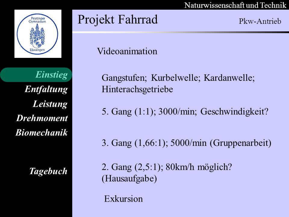 Naturwissenschaft und Technik Projekt Fahrrad Entfaltung Leistung Einstieg Drehmoment Biomechanik Tagebuch Gangstufen; Kurbelwelle; Kardanwelle; Hinte