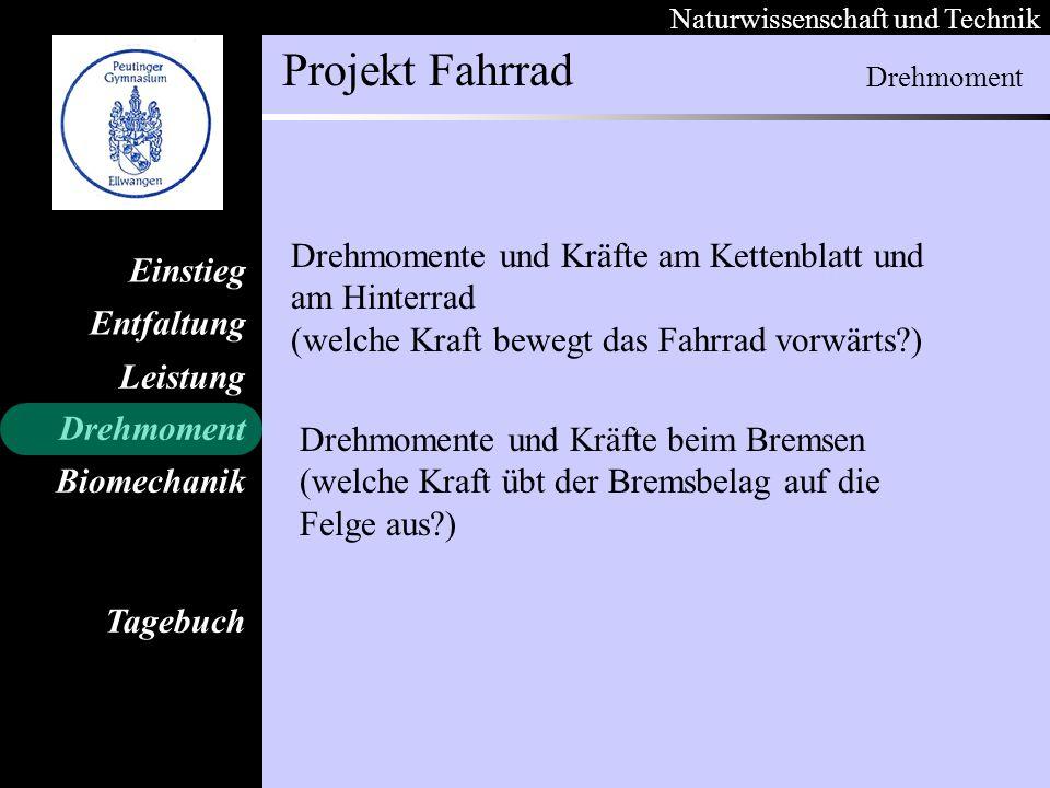 Naturwissenschaft und Technik Projekt Fahrrad Entfaltung Leistung Einstieg Drehmoment Biomechanik Tagebuch Drehmoment Drehmomente und Kräfte am Ketten