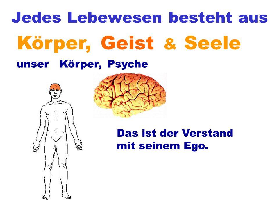 Jedes Lebewesen besteht aus & SeeleKörper,Geist Psyche unsere Körper, Das ist der Verstand mit seinem Ego.